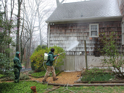 pressure washing chattanooga